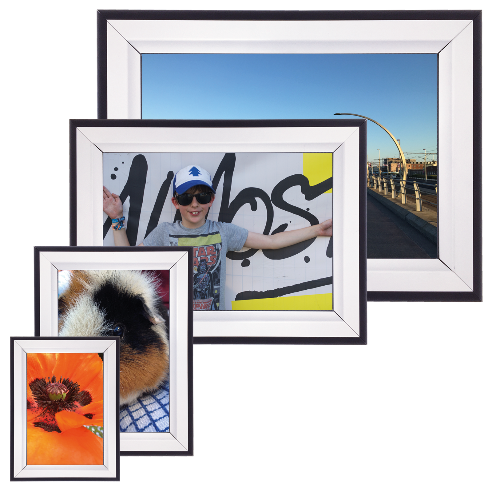 54367b10ac6 Double Colour 42mm Poster Display Snap Frame