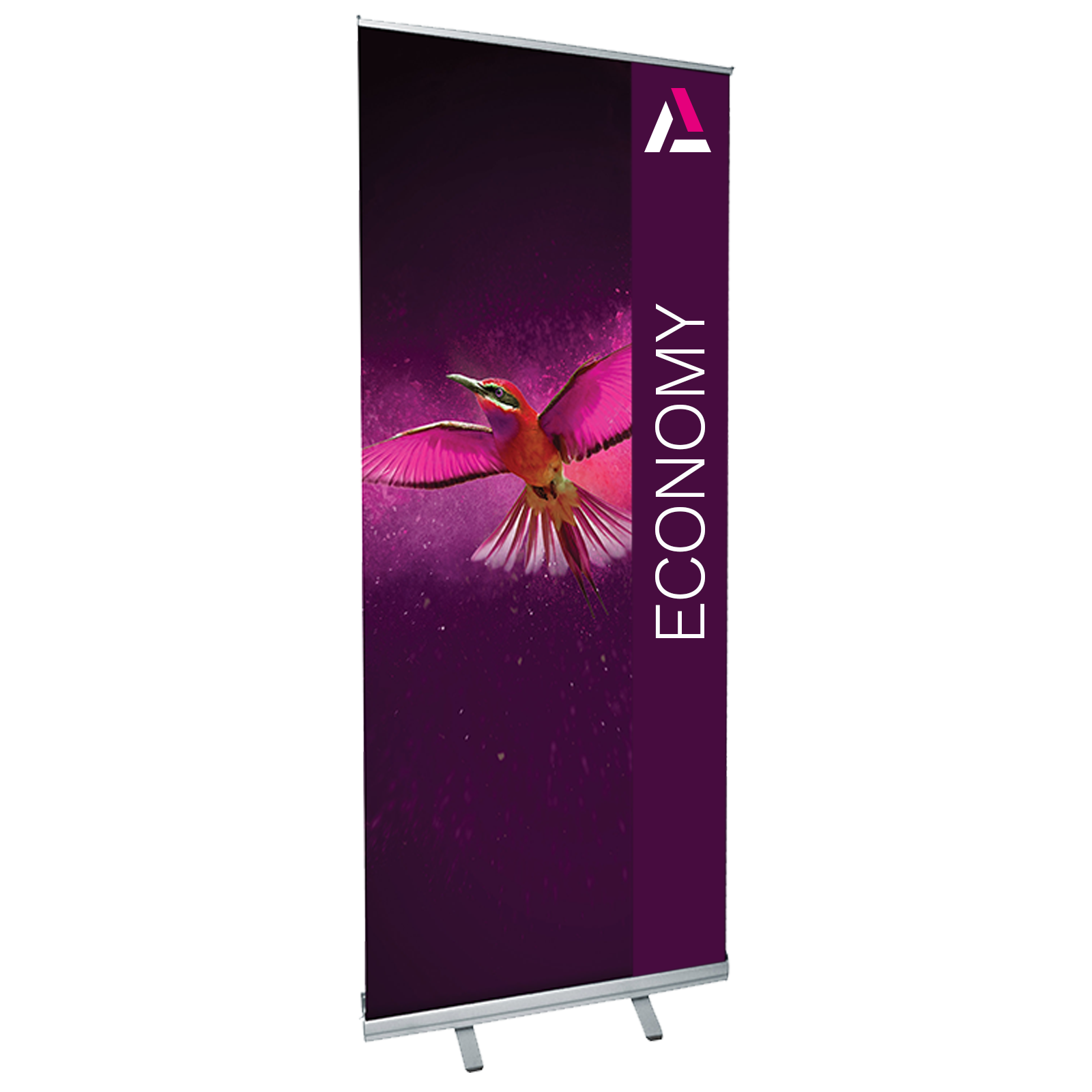 Economy Single Sided Pull Up Roller Banner