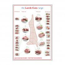 Lamb Prime Cuts of Meat Poster