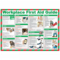 Workplace First Aid Guide Poster