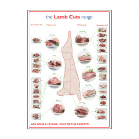 Butchers Lamb Cuts of Meat Laminated Poster